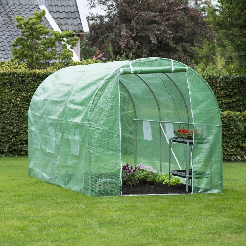 prozirni zeleni pokrov omogućuje sunčevoj svjetlosti da dođe do biljaka. Zahvaljujući ojačanom sloju